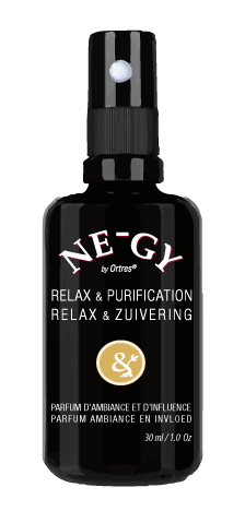 NE-GY Relaxation & Purification by Ortres